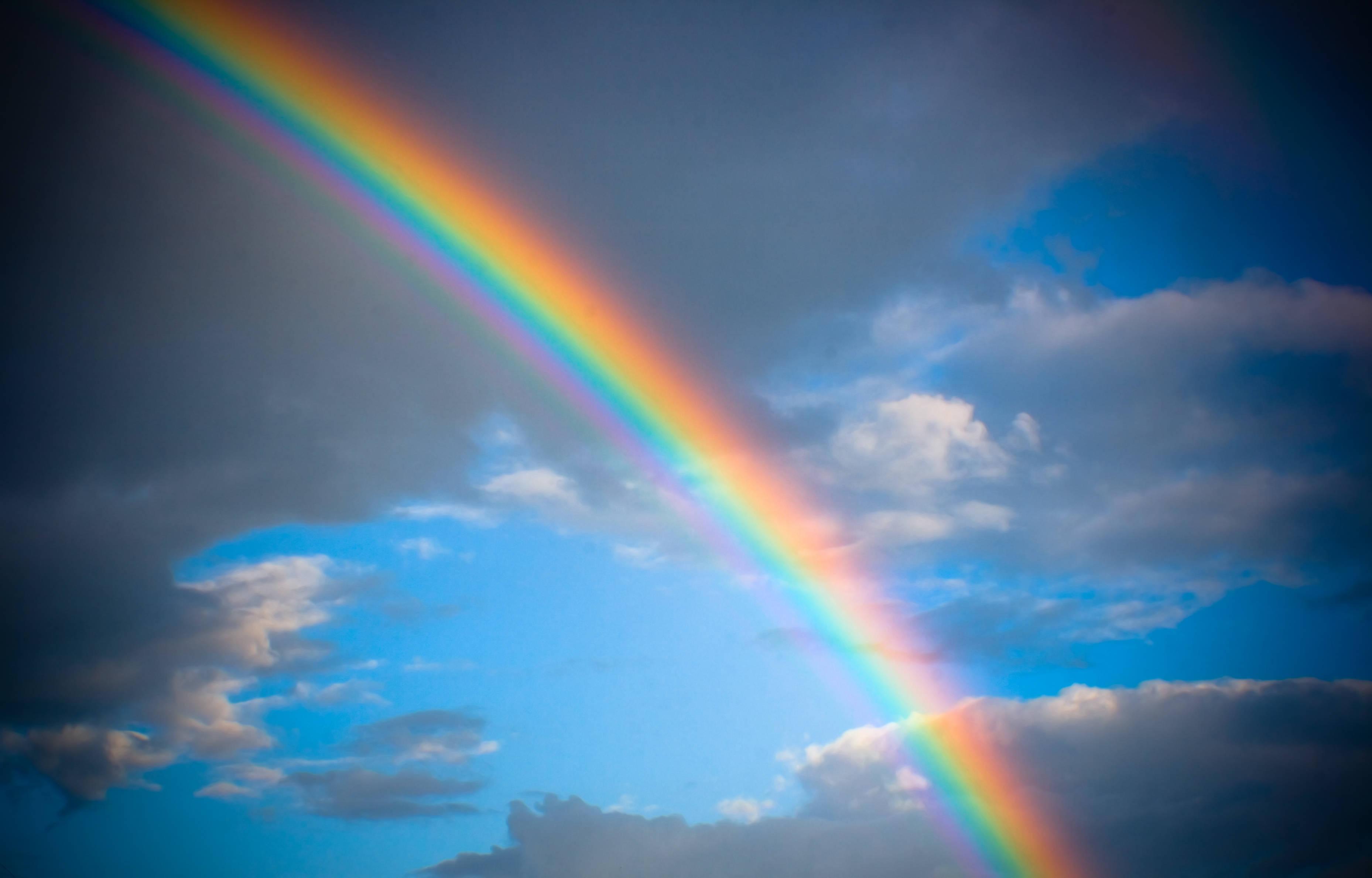 rainbow - Rainbow Picture