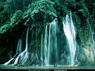 florest waterfall
