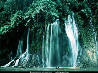 florest waterfall