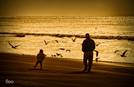 Grandfather & Granddaughter Walking on Beach silouetted by the e