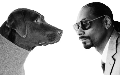 Snood Dogg